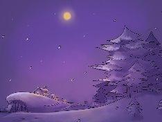겨울밤 눈