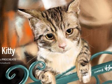 아이패드로 그림 그리기 - 난간에 기댄 고양이
