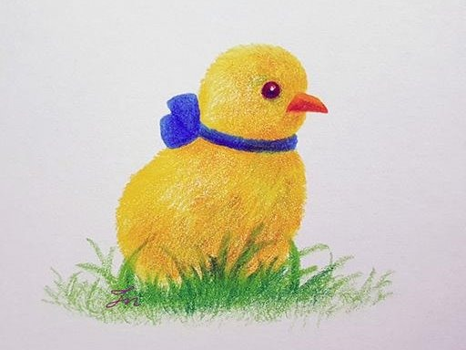 노란 병아리